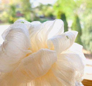日本の匠の技による「削り花」
